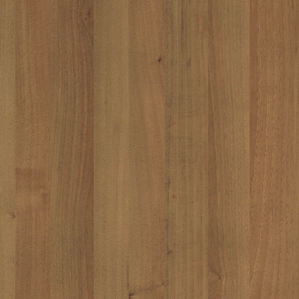 9455 BS Guarnieri Walnut